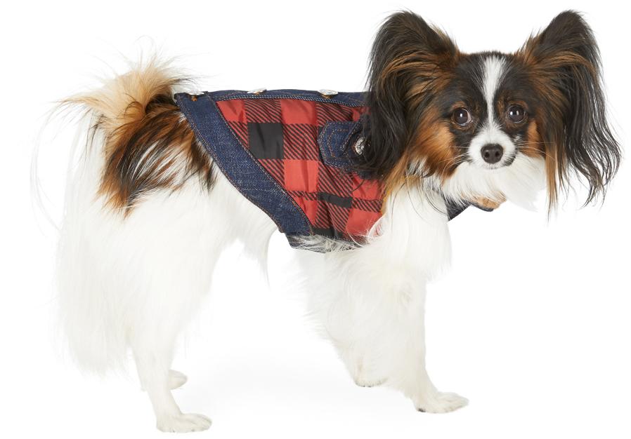 Black & Red Poldo Dog Couture Edition Small Toronto Vest