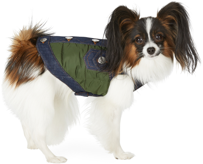 Green Poldo Dog Couture Edition Small Vancouver Vest