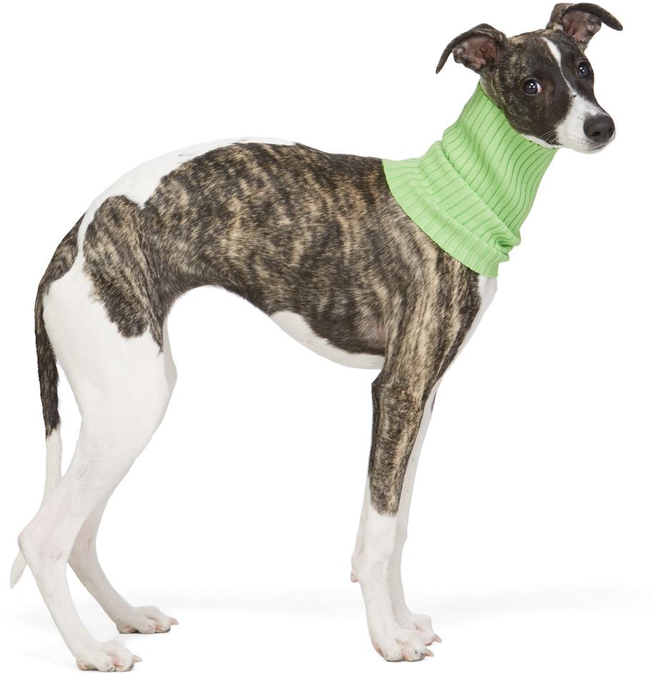 Green Nonna Animal Collar
