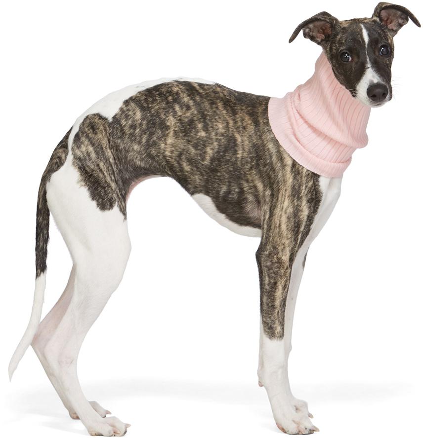Pink Nonna Animal Collar