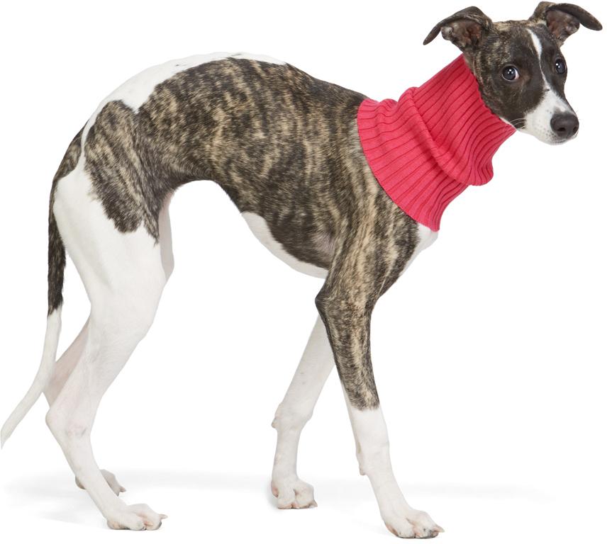 Pink Nonna Animal Turtleneck Collar