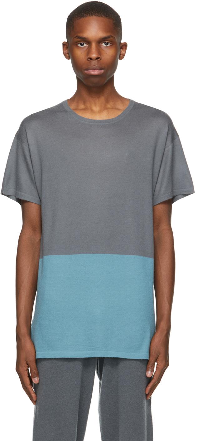 SSENSE Exclusive Grey & Blue Bicolor T-Shirt