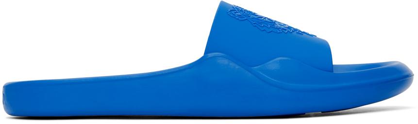 Blue Tiger Pool Slides